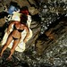 on the rocks by robertita