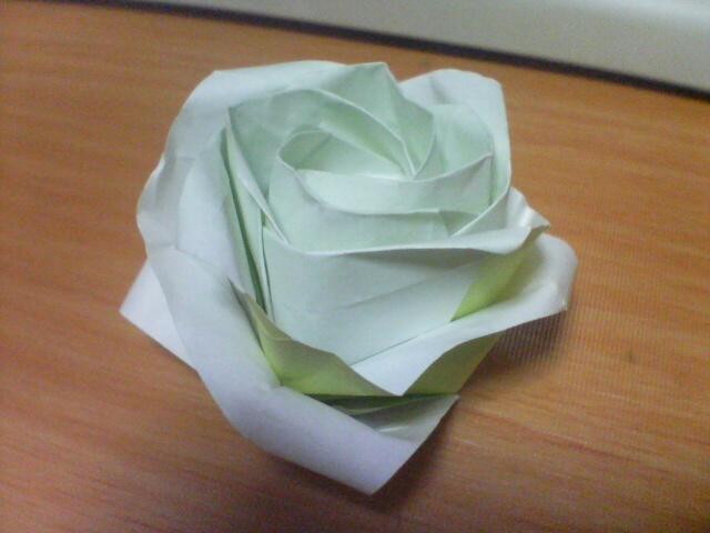 Kawasaki Rose (New Rose) | Flickr - Photo Sharing! - photo#27