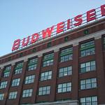 Image de Anheuser-Busch Brewery Tours. beer tour ab brewery anheuserbusch snowstlouismissouri