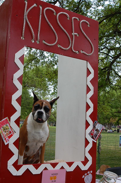 Dog Kissing Booth For Sale