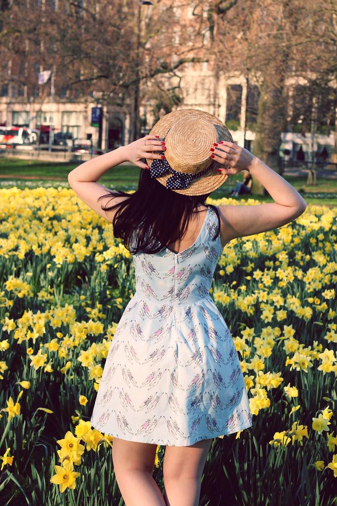 sunshine16