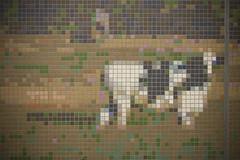 art(0.0), textile(0.0), cross-stitch(0.0), flooring(0.0), toy(0.0), mosaic(1.0),
