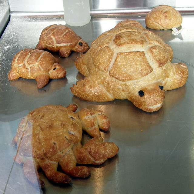 2202 turtle bread | Flickr - Photo Sharing!