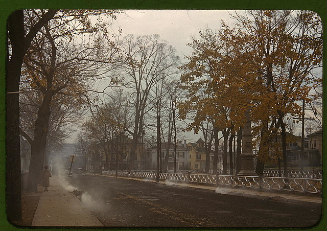 Burning the autumn leaves in Norwich, Connecticut  (LOC)