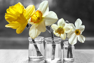 Spring cleaning reduce toxins at home