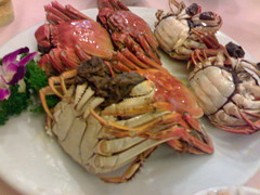 spiny lobster(0.0), soft-shell crab(0.0), crab(1.0), meal(1.0), animal(1.0), seafood boil(1.0), crustacean(1.0), fish(1.0), seafood(1.0), invertebrate(1.0), dungeness crab(1.0), food(1.0), dish(1.0),
