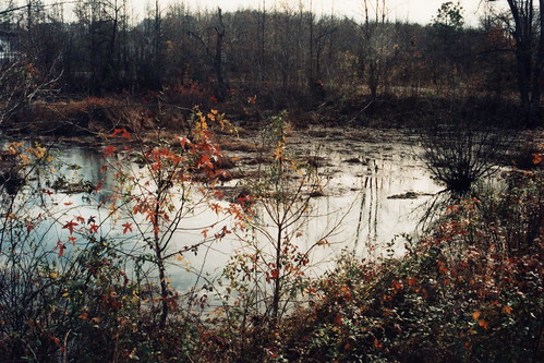 Beaver Dam Creek battlefield, start of the Seven Days battles, US Civil War