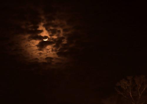 sky sepia night skies monotone filter plugin monte summerville mysky myskies pspx2 romans83839 montwerx mdggraphix mdggraphixnet