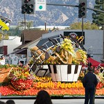 Pasadena Rose Parade 2008 32