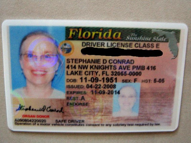 there are about licensed drivers here in florida