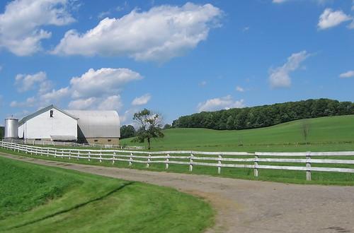 Drive-by Farm, I