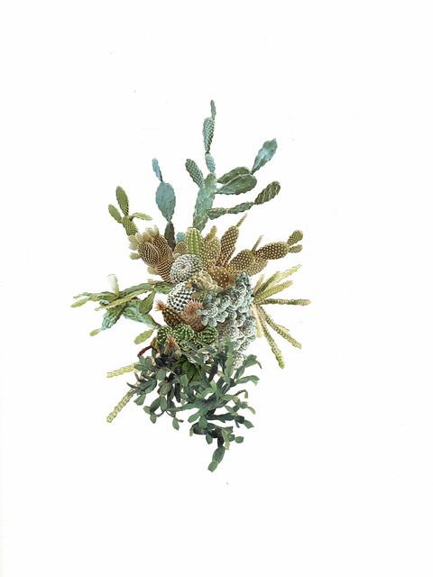 cactuscluster005