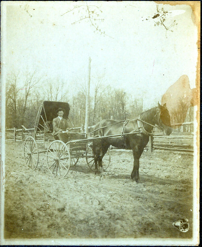 Man, Horse and buggy