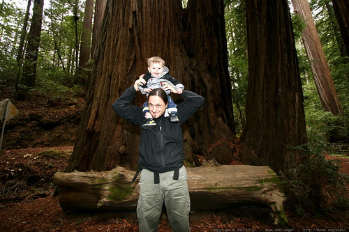 sean & sequoia under the heritage grove redwood trees    MG 7966