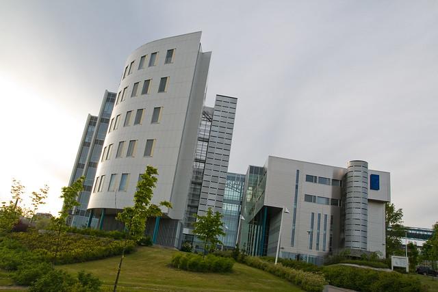 Universidad de Tampere.