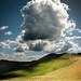 Cloudy day by Soffia Gisladottir