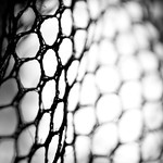 net3-flickr