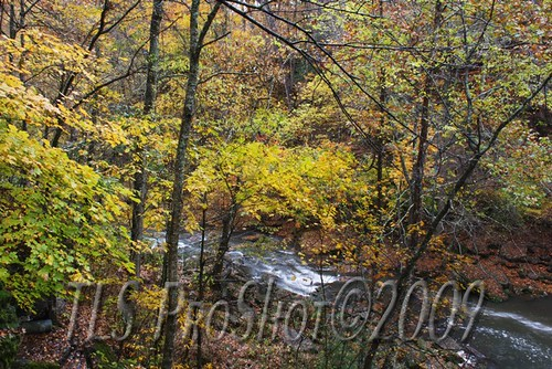 trees leaves river tennessee fallcolors barns waterfalls bronzestatue coffeecounty crumptoncreek