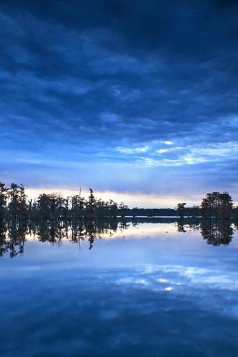 morning blue autumn trees lake reflection fall sunrise la louisiana lafayette ben surreal swamp pierce cypress lakemartin breauxbridge