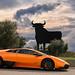 Bull Power by Thomas van Rooij