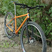 Our Demo 29er Mtn Bike