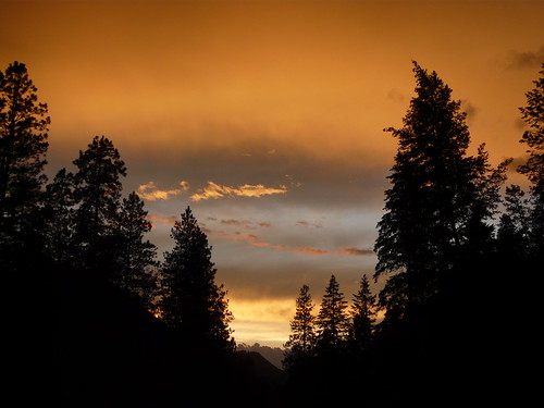 trees sunset sky orange clouds forest washington ferrycounty