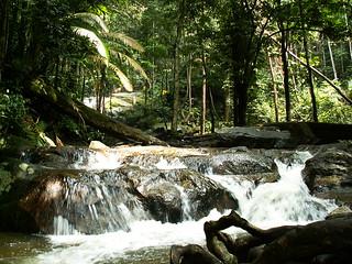 Tekala Falls waterfall waters flow magnets for imagination