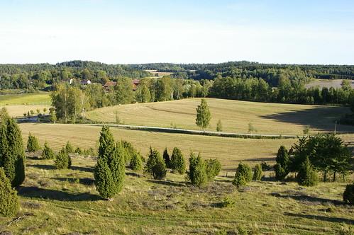 geotagged sweden sverige nyköping sörmland tumulus gravhög uppsa kungshög royalmound