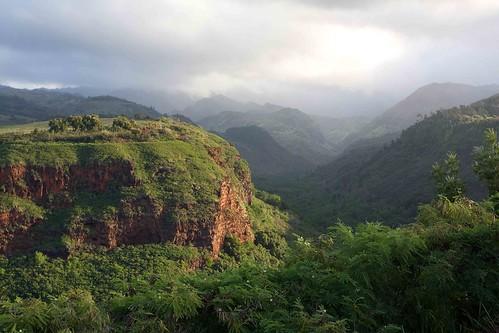 morning green hawaii kauai lush hanapepevalley vanagram vacationwithalltheparents onourwaytosomethingfun