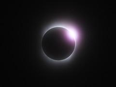 celestial event, eclipse, corona, circle,
