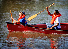 canoe, boats and boating--equipment and supplies, vehicle, sports, rowing, watercraft rowing, boating, watercraft, canoeing, oar, boat, paddle,