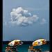 North Beach, Isla Mujeres (3)