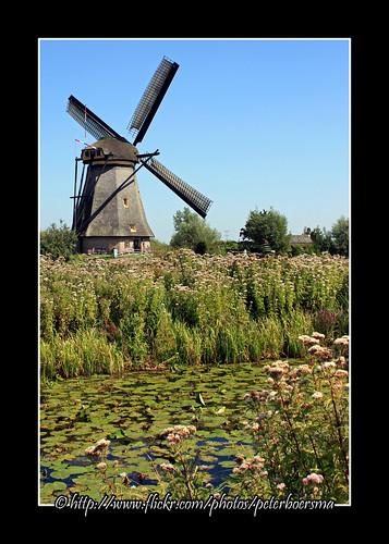 Windmill 2 Kinderdijk