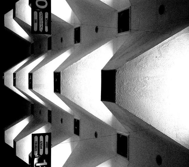 Luz 2.