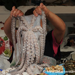 Octopus on Show at Surquillo Market - Lima, Peru