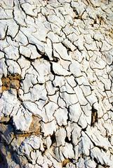 Mud Volcanoes at Salton Sea