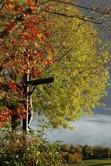 Crucifix aux couleurs d'automne