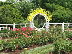 Gladney Rose Garden. Visitors To The Missouri Botanical ...