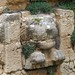 Lion's head, Byblos