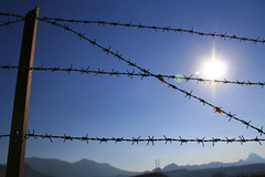 wire fencing, barbed wire, fence, sunlight, line, sky,