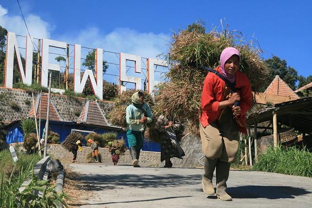 On the way to Merapi Volcano, Jawa, Indonesia