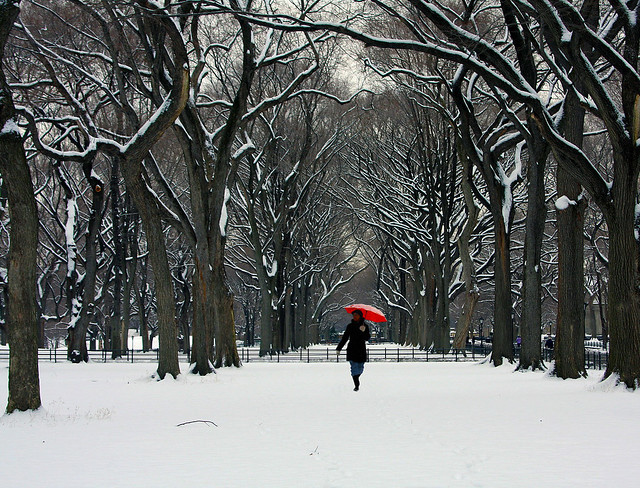 Winter in Central Park, New York.