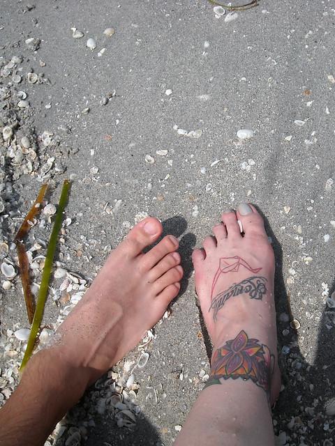 collecting shells in sanibel.