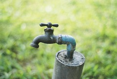 Faucet by darylgarza