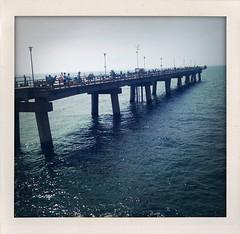 Sea Gull Pier