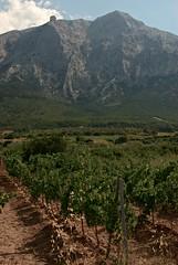 Sardegna (viii)