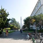 UC Berkeley Campus 003