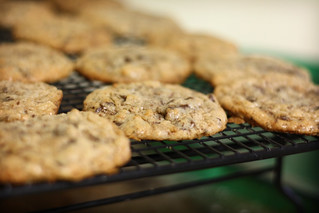 chocolate chunk and toasted coconut cookies | by ginnerobot