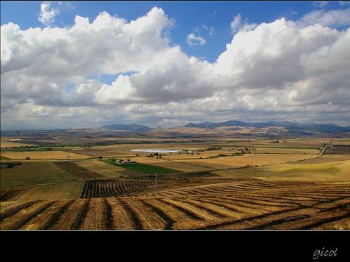 blue sky italy panorama azul clouds italia nuvole view amarillo giallo cielo vista campo puglia burned wheatfields apulia foggia bruciato yellos rurallandscape arso daunia campidigrano subappenninodauno paesaggioagrario