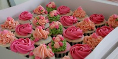 HCC011-2011. Pink and peach colour hantaran cupcakes